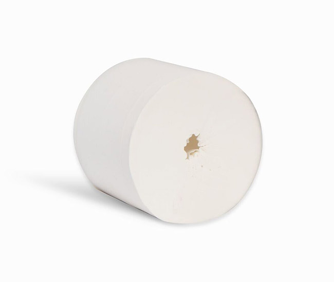 2PLY CORELESS TOILET ROLL - NWJCL100PN